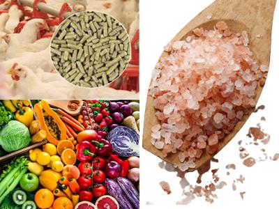 food&agr-ser